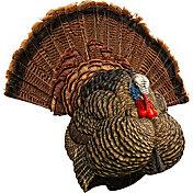Turkey Hunting Decoys