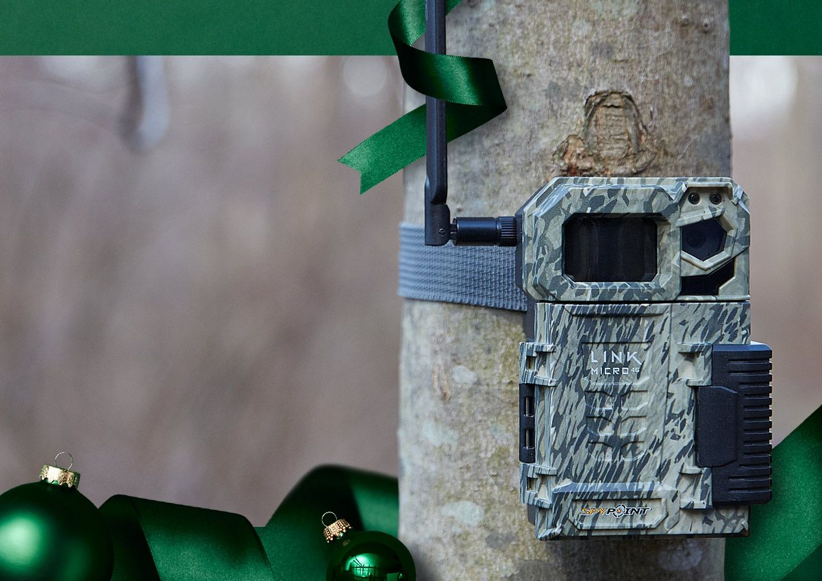 Image features a game camera.